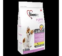 1ST CHOICE Для щенков декоратиных и мелких пород с ягненком и рыбой (Фест Чойс Puppy Toy&Small Breeds Skin&Coat)