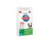 Hills Science Plan Kitten Healthy Development Tuna сухой корм для котят Тунец (Хиллс). Вес: 300 г