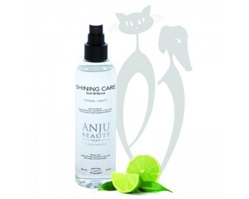 "Anju Beaute Спрей ""Ультра-Блеск"" (Brilliance Shining Spray). Объем: 250 мл"