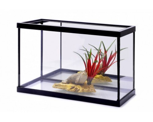Аквариум с зеркалом и декором, 31х21х16 см (Lot promo fishtank + decoration)