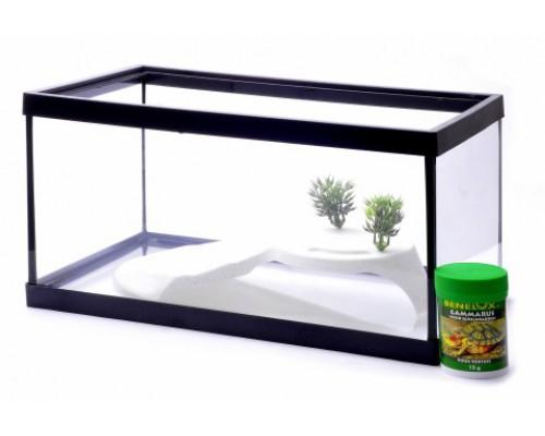 Аквариум с декором, 36х24х24 см (Lot promo fishtank + decoration + food)