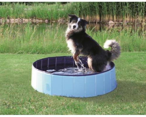 Бассейн для собак 120х30см голубой/синий (TRIXIE)