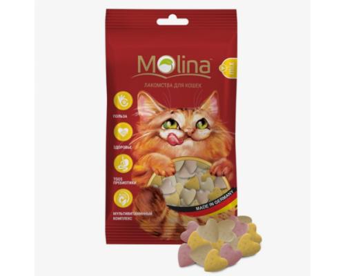 """Молина Лакомства для кошек """"Сердечки MIX"""". Вес: 35 г"""