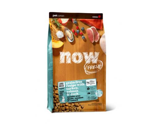 NOW FRESH Беззерновой для Щенков Крупных пород с Индейкой, Уткой и овощами (Fresh Puppy Large Breed Recipe Grain Free). Вес: 5,44 кг