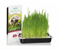 TiTBiT трава для Кошек
