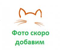 Pro Plan Sterilised с курицей сухой корм для взрослых кошек кастрированных/стерилизованных (Про План). Вес: 400 г